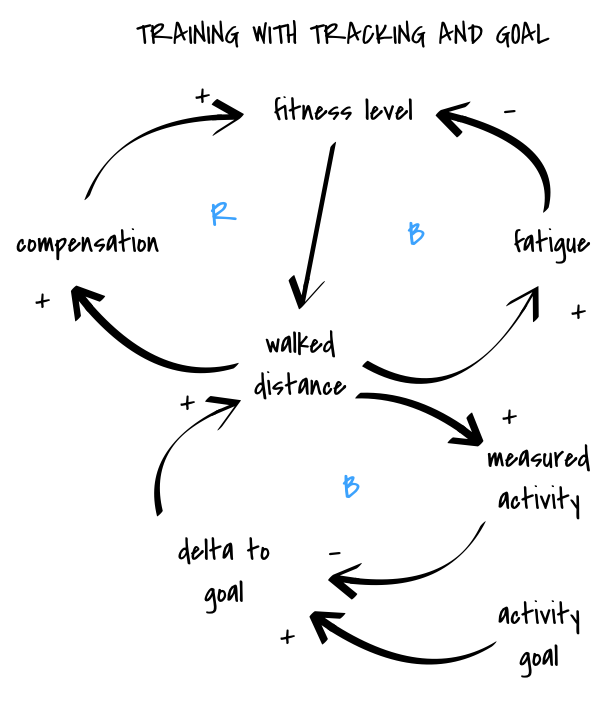 training causal loop diagram, tracker and goal